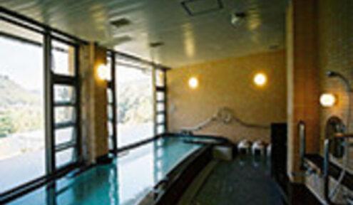 泉質はアルカリ泉。 別名「美人の湯」。 敷地内のあずま屋には足湯もあります